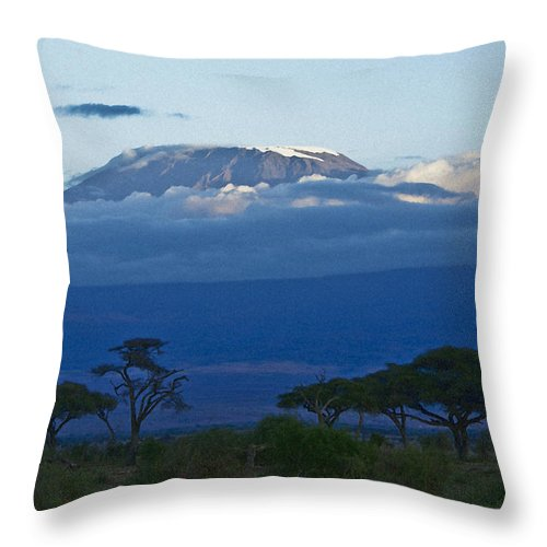Africa Throw Pillow featuring the photograph Magnificent Kilimanjaro by Michele Burgess