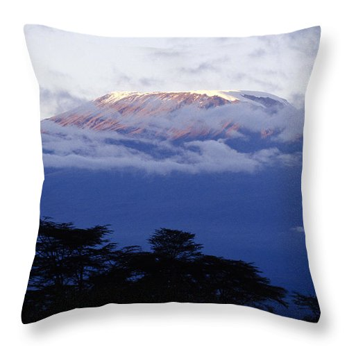 Africa Throw Pillow featuring the photograph Magnificent Mount Kilimanjaro by Michele Burgess