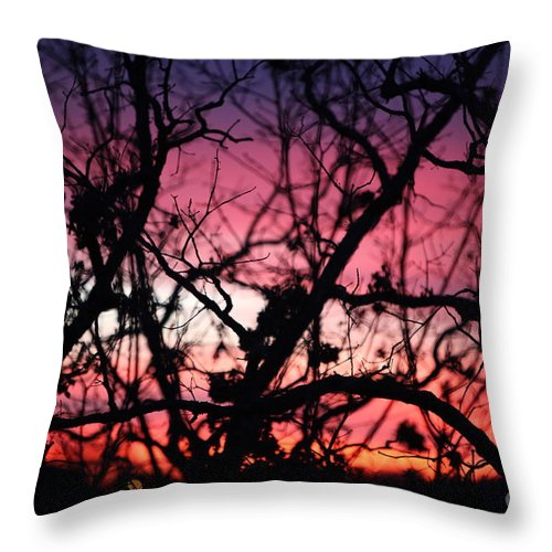 Sunset Throw Pillow featuring the photograph Magnificent Sunset And Trees by Nadine Rippelmeyer