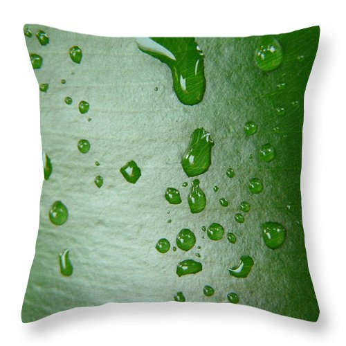 Leaves Throw Pillow featuring the photograph Magnifying Drops by Valerie Ornstein
