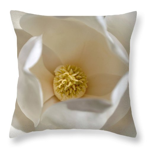 Magnolia Throw Pillow featuring the photograph Magnolia Flower by Jill Reger