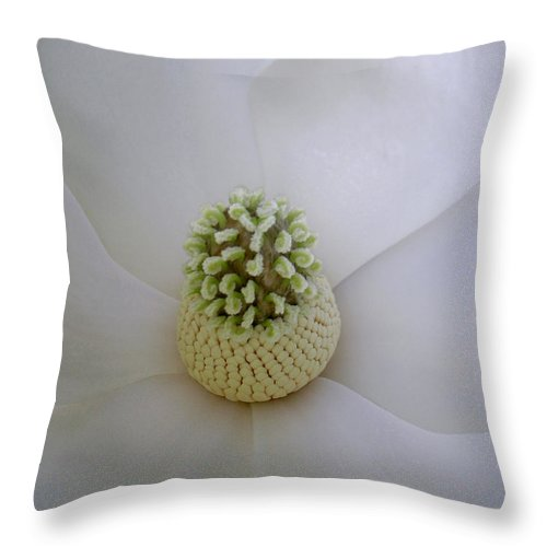 Nature Throw Pillow featuring the photograph Magnolia In Soft Lines by Lucyna A M Green