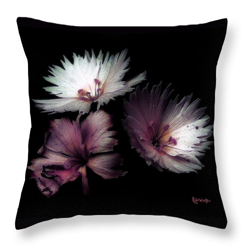Dianthus Throw Pillow featuring the painting Maiden Mother Crone by RC DeWinter