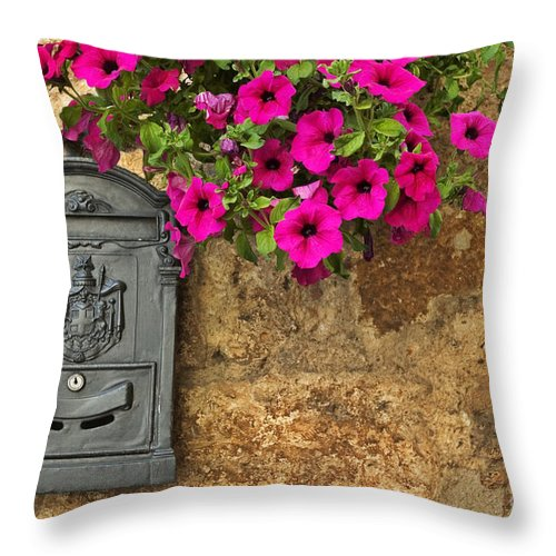 Mailbox Throw Pillow featuring the photograph Mailbox With Petunias by Silvia Ganora