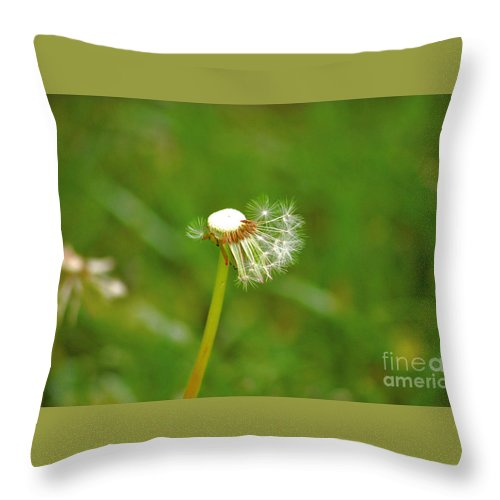 Dandelion Throw Pillow featuring the photograph Make A Wish by Elizabeth Stone