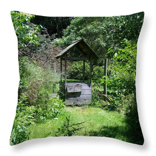 Scenic Throw Pillow featuring the photograph Make A Wish by Erin Rosenblum