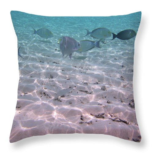 Turquoise Sea Throw Pillow featuring the photograph Maldives School Of Tropical Fish by Katrina Lau