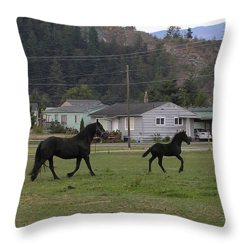 Friesian Throw Pillow featuring the photograph Mamas And Babies by Louise Magno