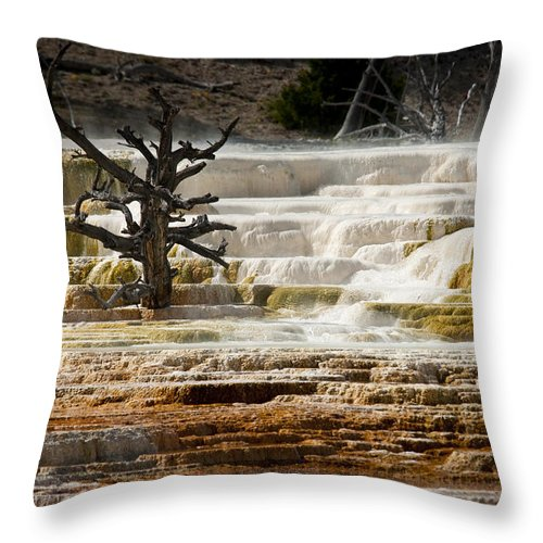 Mammoth Hot Springs Throw Pillow featuring the photograph Mammoth Hot Springs Beauty by Chad Davis