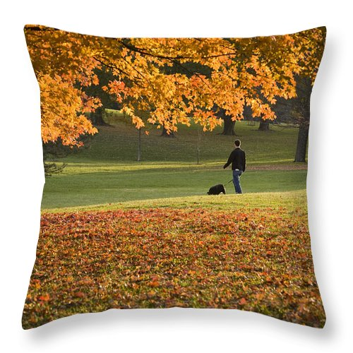 Park Throw Pillow featuring the photograph Man In The Park by Chad Davis