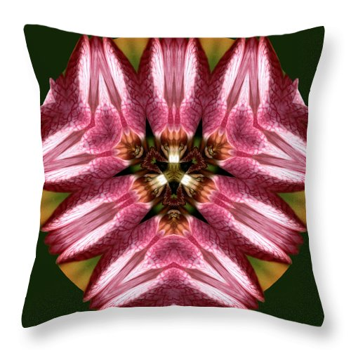 Floral Throw Pillow featuring the photograph Mandala Lady Slipper by Nancy Griswold