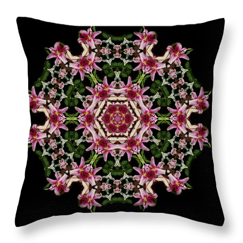 Mandala Throw Pillow featuring the photograph Mandala Monadala Lisa by Nancy Griswold