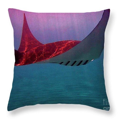 Manta Ray Throw Pillow featuring the photograph Manta Sailing by Bette Phelan