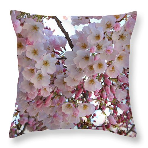 Pink Blossoms Throw Pillow featuring the photograph Many Pink Blossoms by Carol Groenen