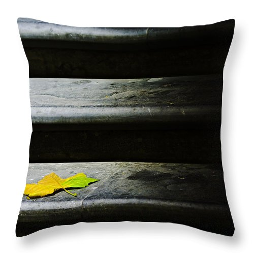 Maple Leaf Throw Pillow featuring the photograph Maple Leaf On Step by Sheila Smart Fine Art Photography