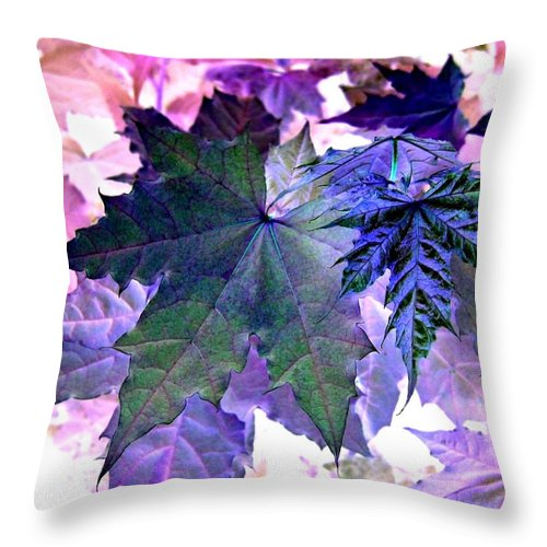 Dramatic Throw Pillow featuring the photograph Maple Magnetism by Will Borden