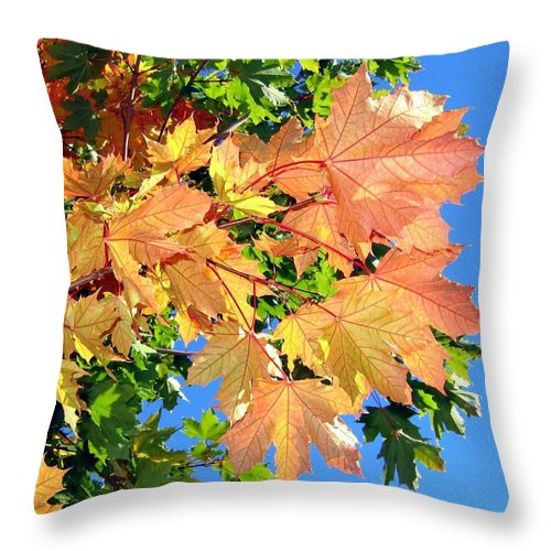 Autumn Throw Pillow featuring the photograph Maple Mania 1 by Will Borden