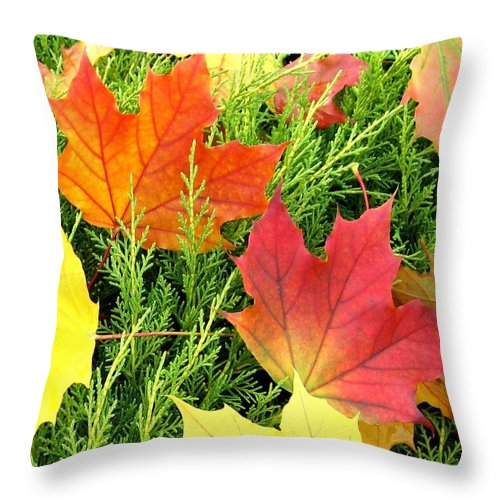 Autumn Throw Pillow featuring the photograph Maple Mania 5 by Will Borden