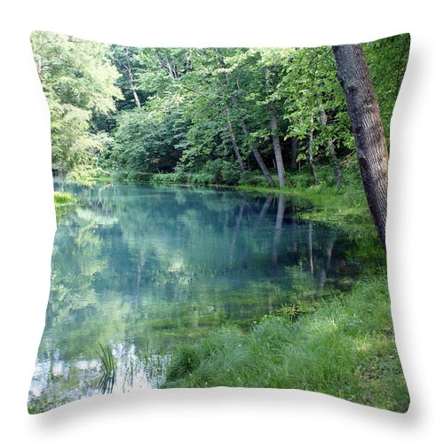 Maramec Springs Park Throw Pillow featuring the photograph Maramec Springs 1 by Marty Koch