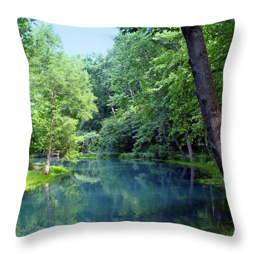 Maramec Springs Park Throw Pillow featuring the photograph Maramec Springs 2 by Marty Koch