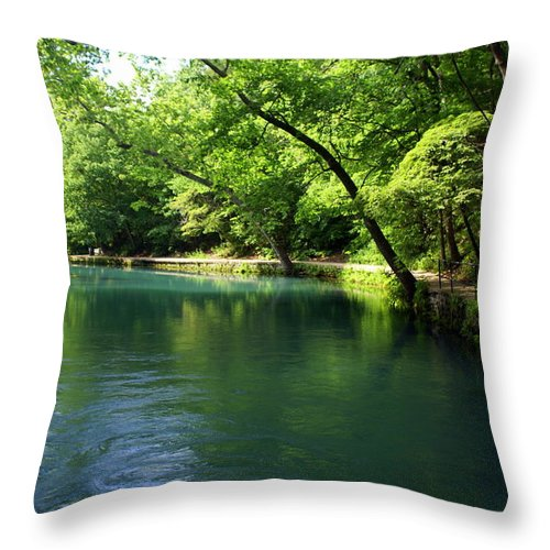 Maramec Springs Park Throw Pillow featuring the photograph Maramec Springs 4 by Marty Koch