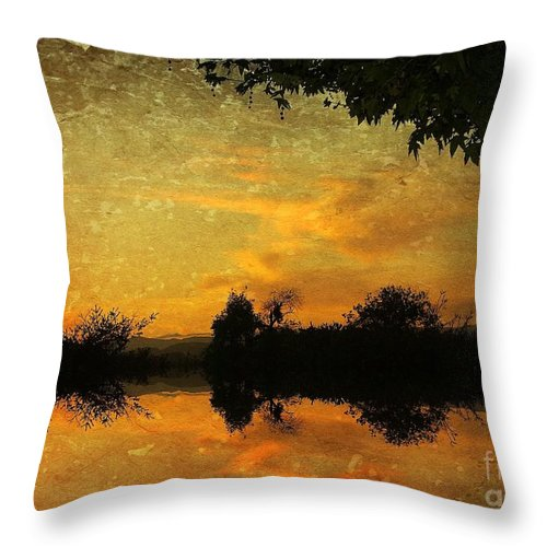 500 Views Throw Pillow featuring the photograph March Madness by Jenny Revitz Soper