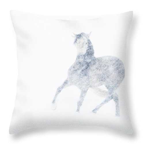 Mare Throw Pillow featuring the photograph Mare In A Blizzard I by Carol Walker