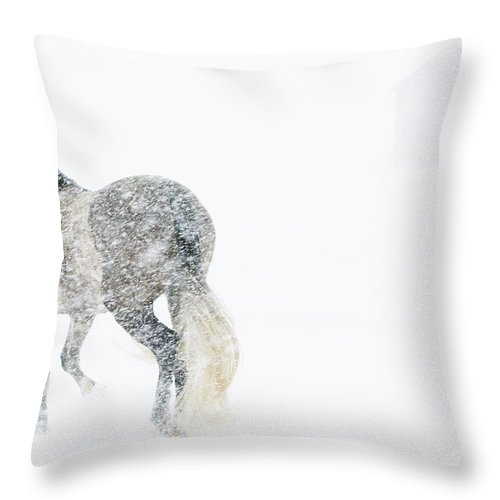 Andalusian Throw Pillow featuring the photograph Mare In A Blizzard II by Carol Walker