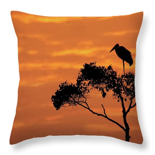 Africa Throw Pillow featuring the photograph Maribou Stork On Tree With Orange Sunrise Sky by Susan Schmitz