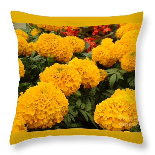 Flower Throw Pillow featuring the photograph Marigold Party by Kathy Bucari