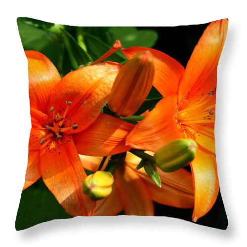 Lily Throw Pillow featuring the photograph Marmalade Lilies by David Dunham
