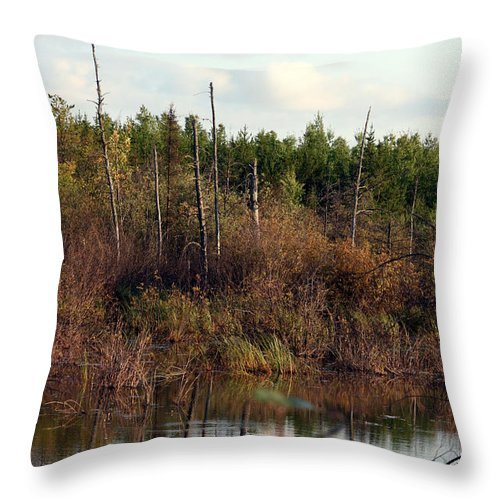 Marsh Lake Water Aquatic Wild Natural Mother Nature Pond Throw Pillow featuring the photograph Marsh by Andrea Lawrence
