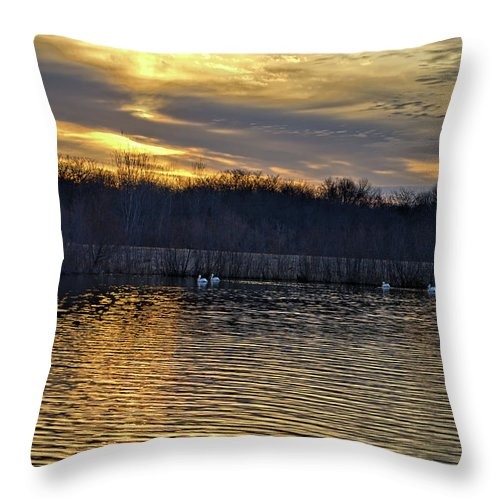 Pond Throw Pillow featuring the photograph Marsh Ripple Pond by Bonfire Photography