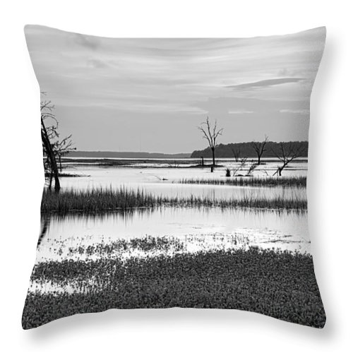Beaufort County Throw Pillow featuring the photograph Marsh Skeletons by Phill Doherty