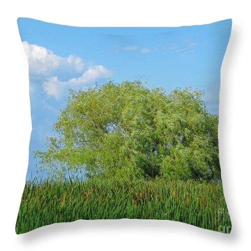 Marsh Throw Pillow featuring the photograph Marshland by Ann Horn