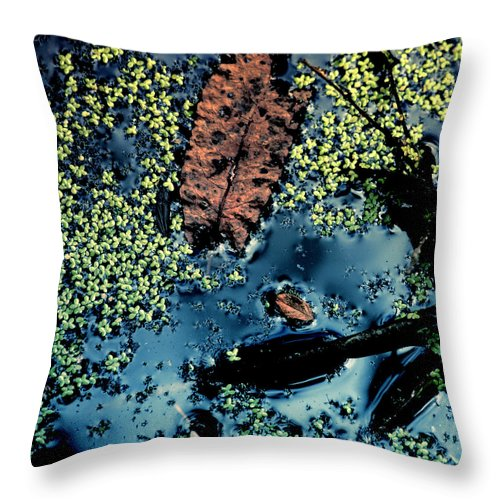 Marshland Art Throw Pillow featuring the photograph Marshland by Bonnie Bruno