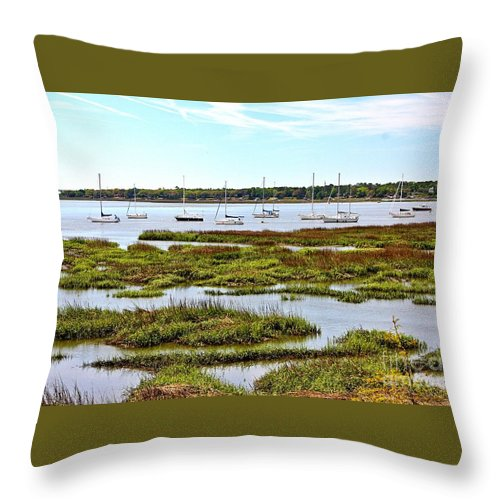 Landscapes Throw Pillow featuring the photograph Marshlands by Ally Flowers