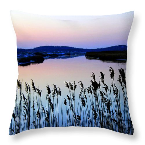 Plum Island Throw Pillow featuring the photograph Marshy Twilight by Hanni Stoklosa