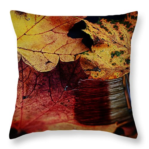 Autumn Throw Pillow featuring the photograph Master Of Colouring by Joachim G Pinkawa