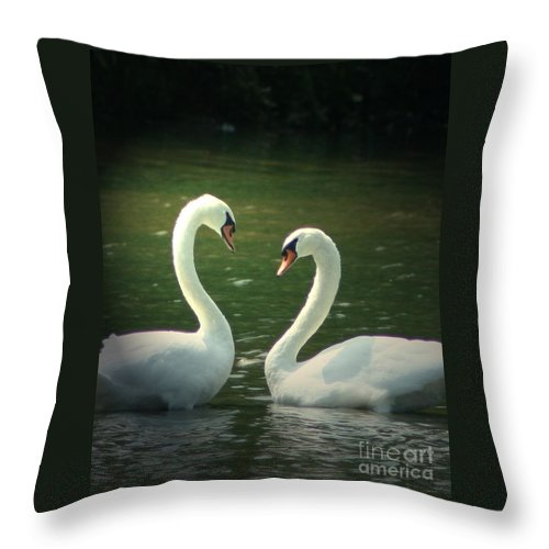 Nature Wildlife Ohio Waterscape Landscape Swans Lake Pond Throw Pillow featuring the photograph Mates For Life by Dawn Downour