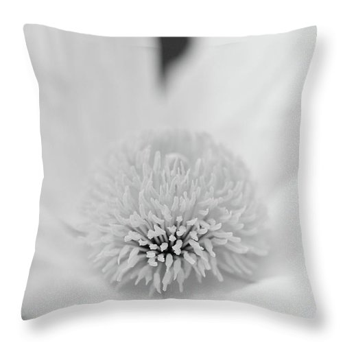 Matilija Poppy Photographs Photographs Throw Pillow featuring the photograph Matilija One In Black by Brooke Roby
