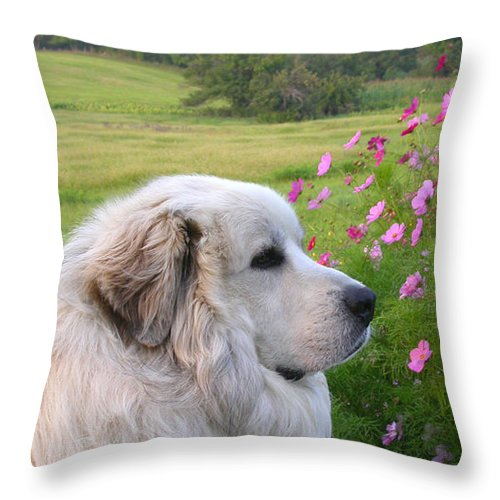 Great Pyrenees Throw Pillow featuring the photograph Maurice by Linda Murphy