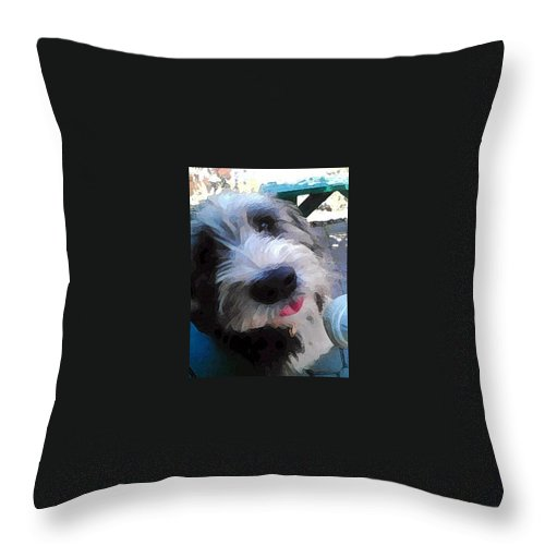 Max Throw Pillow featuring the photograph Max by Carol Eliassen