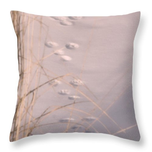 Animal Throw Pillow featuring the photograph May You Always Have Shelter From The Cold by Kenneth Krolikowski