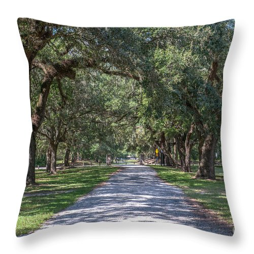Allee Throw Pillow featuring the photograph Mcleod Allee by Dale Powell