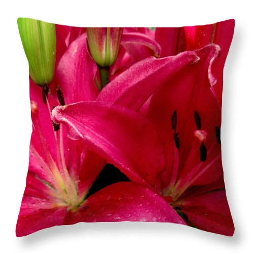 Lily Throw Pillow featuring the photograph Me First by Erin Rednour