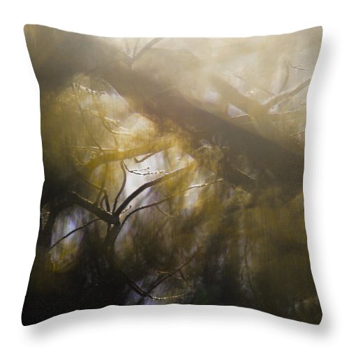 Mist Throw Pillow featuring the photograph Me Fuddled by Linda McRae