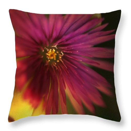 Macro Throw Pillow featuring the photograph Me In You by Zapista
