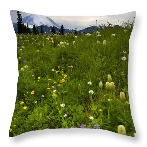 Rainier Throw Pillow featuring the photograph Meadow Beneath The Storm by Mike Dawson