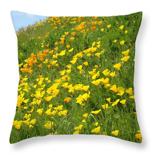 �poppies Artwork� Throw Pillow featuring the photograph Meadow Hillside Poppy Flowers 8 Poppies Artwork Gifts by Baslee Troutman